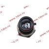Датчик давления масла H3 HOWO (ХОВО) VG1540090035/1 фото 2 Ангарск